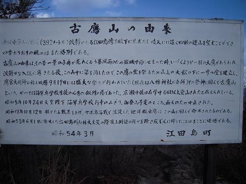 20102011 084.jpg